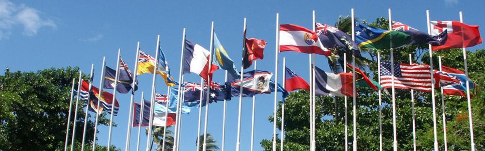 SPC 22 member flags